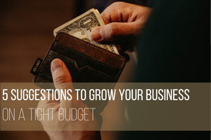 5 Suggestions to Grow Your Business on a Tight Budget