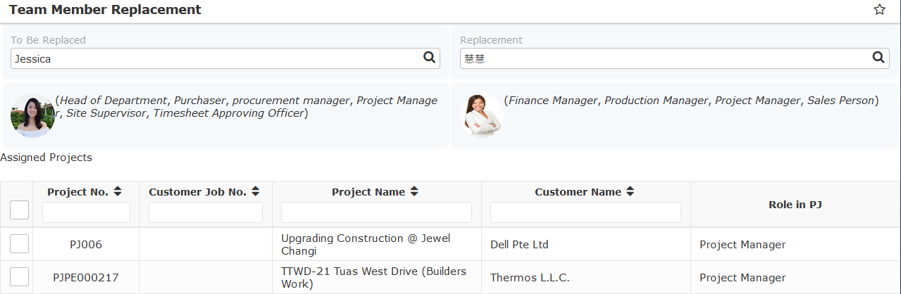 ERP System - Project Team Member Replacement