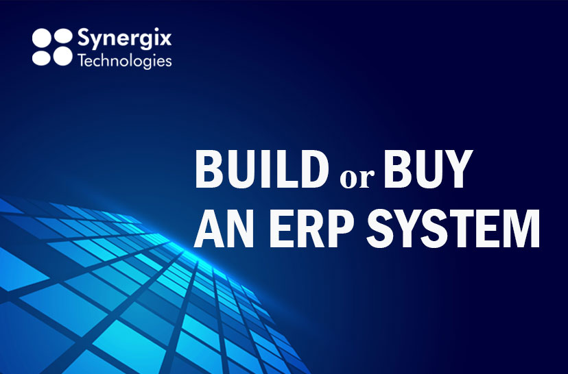 ERP System_Build or Buy an ERP System