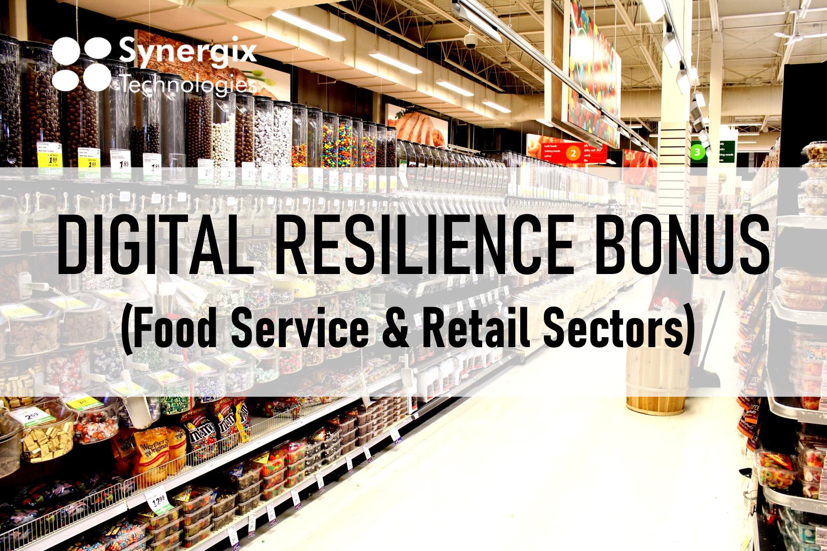 Digital Resilience Bonus - ERP system